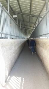 Bethlehem_passage dun checkpoint
